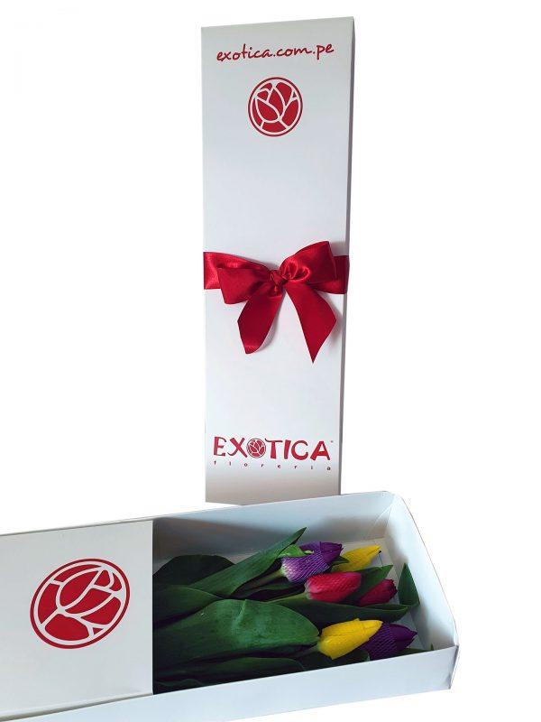 Caja tulipanes x6